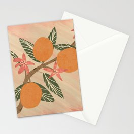 Citrus Grove  Hand Drawn   Orange and Pink  Stationery Cards
