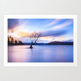 Wanaka Tree Art Print