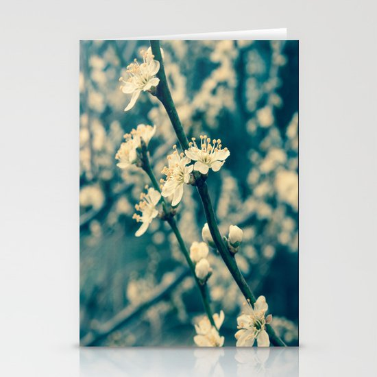 Pretty Blossom Stationery Cards
