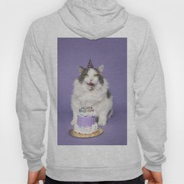 Happy Birthday Fat Cat In Party Hat With Cake Hoody