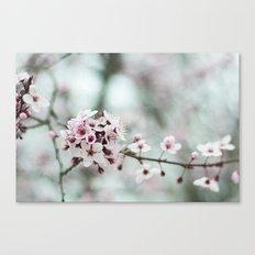 Florcitas Canvas Print