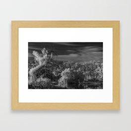 R72 Tree Vision Framed Art Print