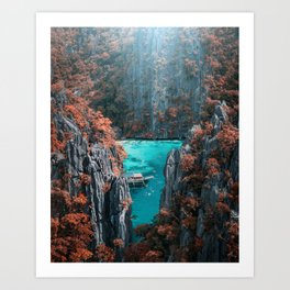 Fall in the Philippines ( just kidding!) Art Print
