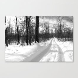 Winter Trails Canvas Print