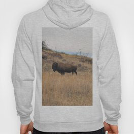 Stand Steady Hoody