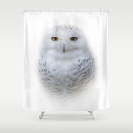 Dreamy Encounter with a Serene Snowy Owl Shower Curtain