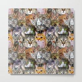 CATS!  Metal Print