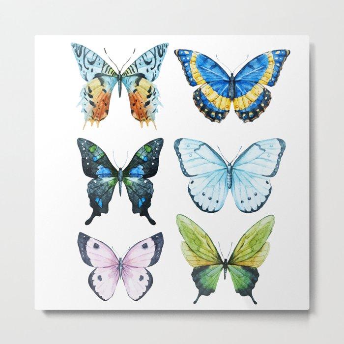 Butterflies 02 Metal Print