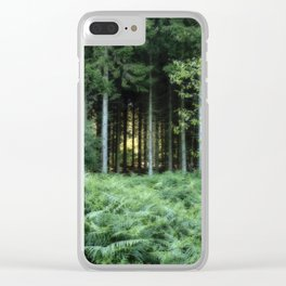 Sunrise through the spruce wood Clear iPhone Case