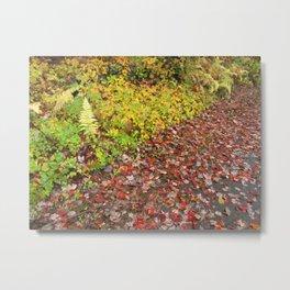 Red Green Split Metal Print