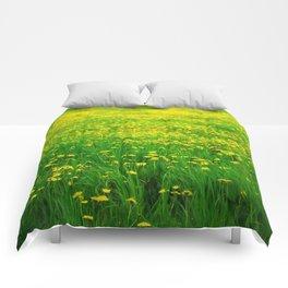 Dandelion Field Comforters