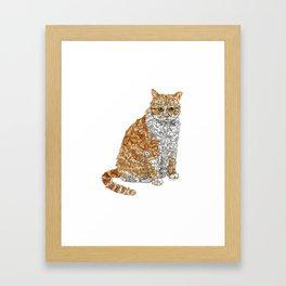 Tabby Bunny Kitty Framed Art Print