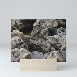 Rocking Out Mini Art Print