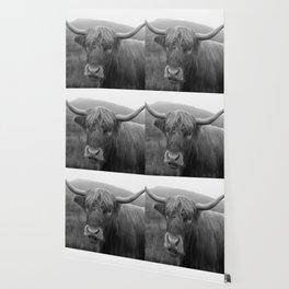 Highland cow I Wallpaper