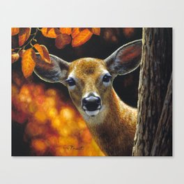 Whitetail Deer Face Canvas Print