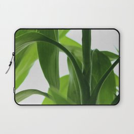 Bamboo Butterly Laptop Sleeve