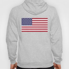 National flag of the USA - Authentic G-spec scale & colors Hoody