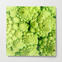 Cauliflower Spirals Metal Print