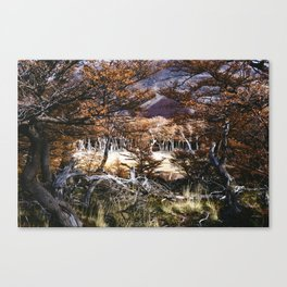Fall in Patagonia, Argentina Canvas Print