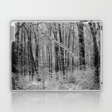 Snow Forest Laptop & iPad Skin