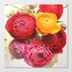 (Ranunculus) Flowers - For You! Canvas Print