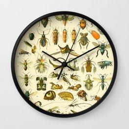 "Adolphe Millot ""Insectes"" Nouveau Larousse 1905 Wall Clock"