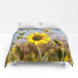 Sunflower - Bright Wildflower on a Summer Day Comforters