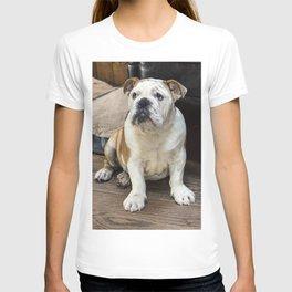 British bulldog puppy T-shirt