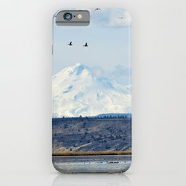 Mt Shasta and Waterfowl iPhone Case