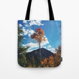 Fall Change Tote Bag