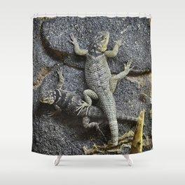 Desert lizards.... Shower Curtain