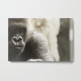 Koga, Intimidation Metal Print