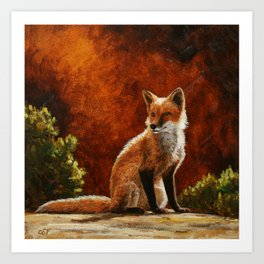 Red Fox in the Sun Art Print