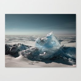 Winter Stories Canvas Print