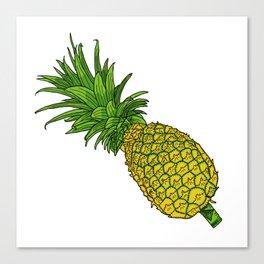 Pi the pineapple Canvas Print