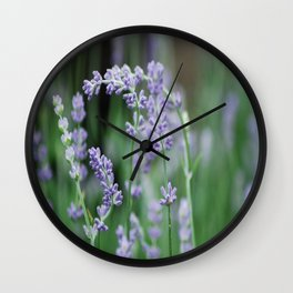 Rabbit Tobacco Wall Clock