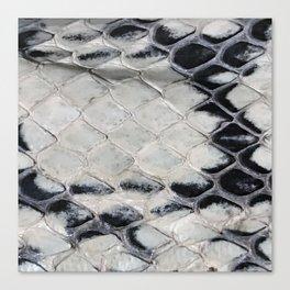 Snake skin Canvas Print
