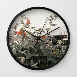 Salmon Flowers against White Wall Clock