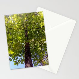 Perspective IV Stationery Cards