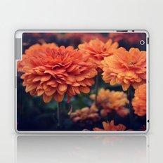 Sweet Orange Laptop & iPad Skin