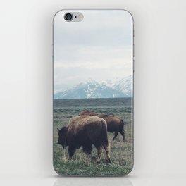 Roaming Buffalo iPhone Skin