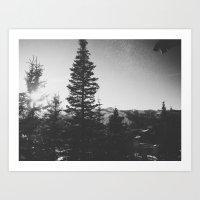 Deer Valley Magic B+W Art Print