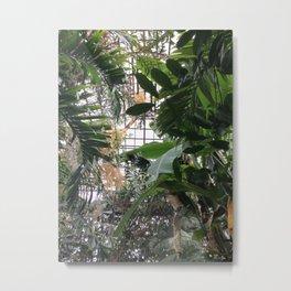 Grids and Organics Metal Print