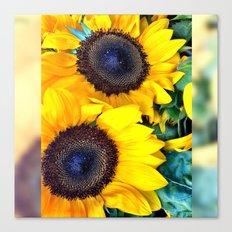 Double Sunshine Canvas Print