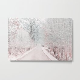 The Winter Road in the Suburb. Metal Print