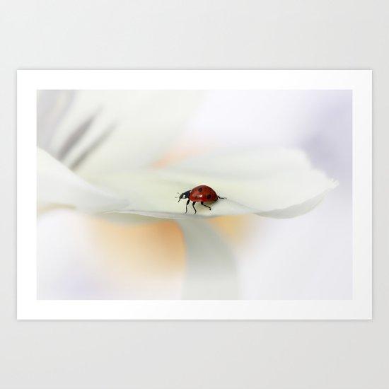 Ladybird on tulip Art Print