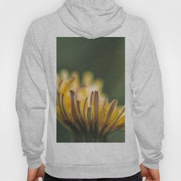 It touches the colors Hoody
