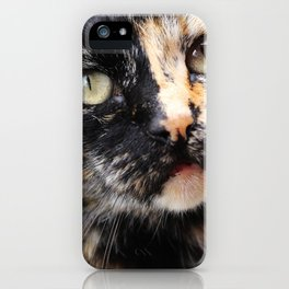 tortie-lini iPhone Case