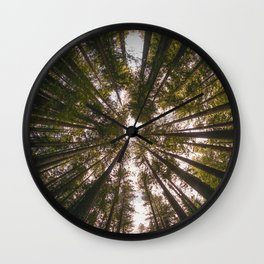 Redwood Fisheye Wall Clock