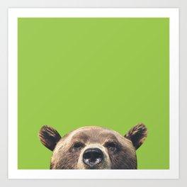 Bear - Green Art Print